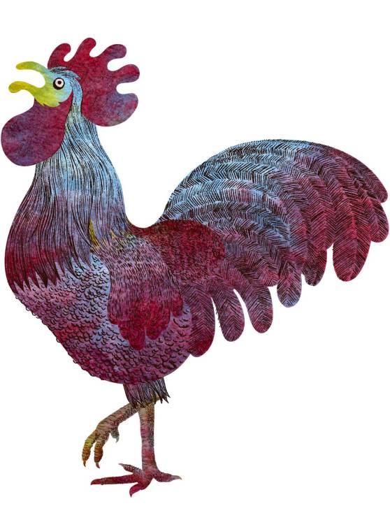 rooster-final_textured